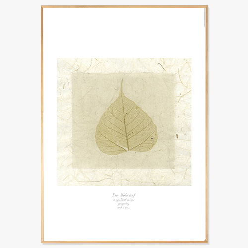 Leaf of Linden Tree (보리수 잎-02)